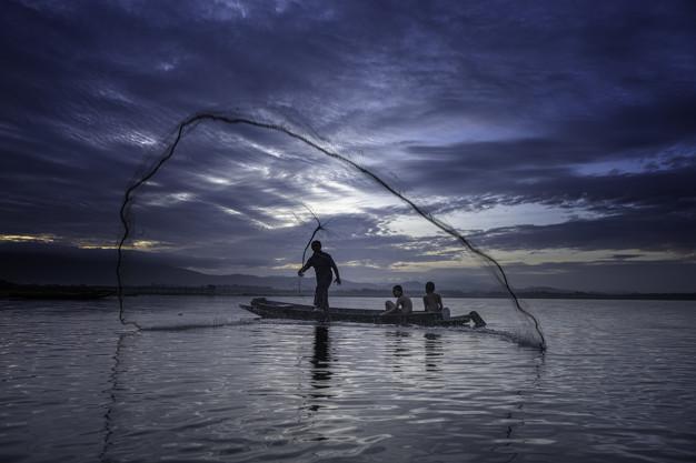 Iltsvind i de danske vande – Fang dine egne fisk